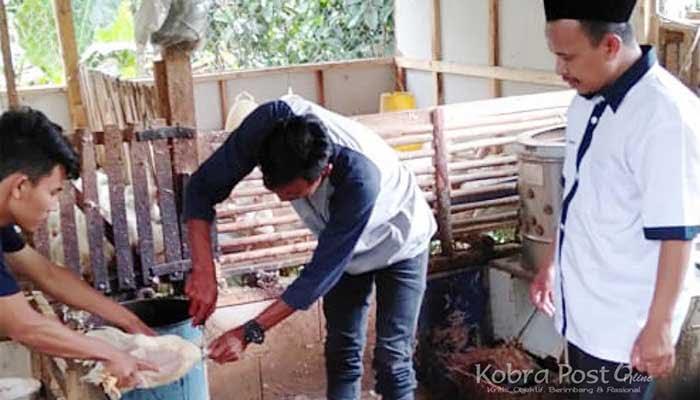 Usaha Potong Hewan