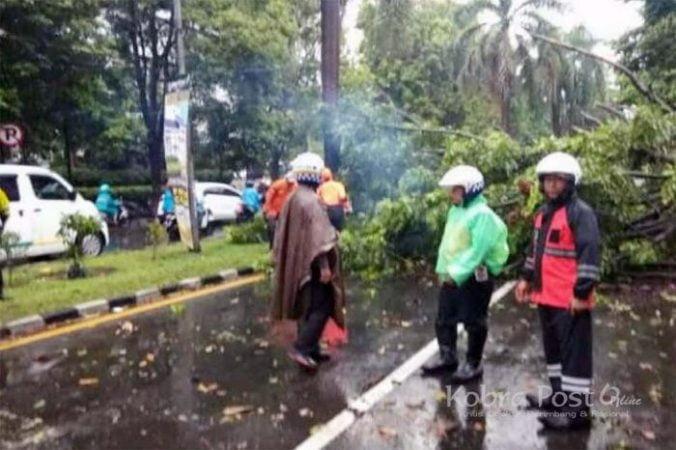 Warga Kp Cijahe Tewas Menyenggol Truk Saat Hindari Ranting Pohon